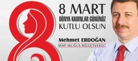 mehmet_erdogan_sosyal-medya15