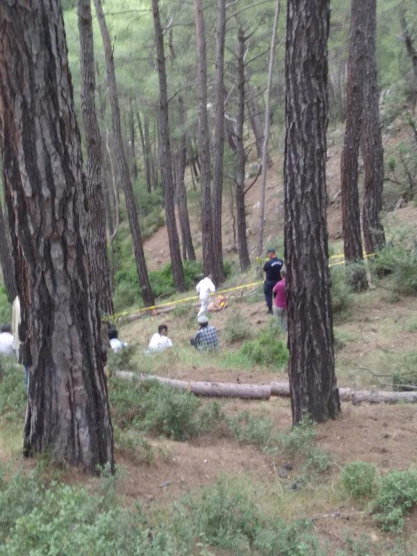 orman işçisi hayatını kaybetti (2)