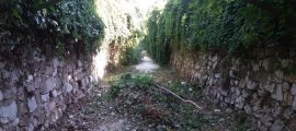 Büyükşehir'de 17 kilometre dere temizlendi (2)