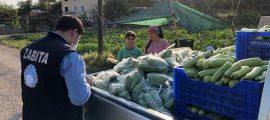 sebze dağıtımı (4)