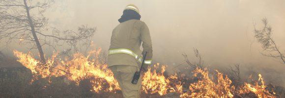 orman yangınları (2)